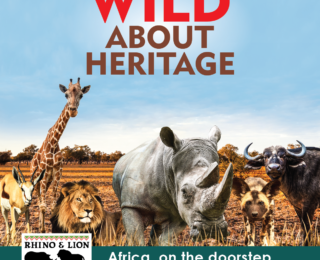 Go wild on Heritage Day at Rhino and Lion Nature Reserve