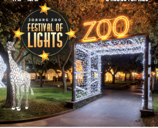 Johannesburg Zoo brings you a Festival of Lights